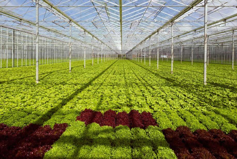 現代農業整體解決方案(an)